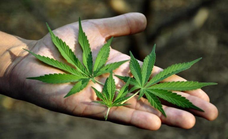 Лечение от наркотической зависимости